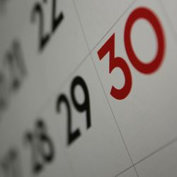 kalender 250